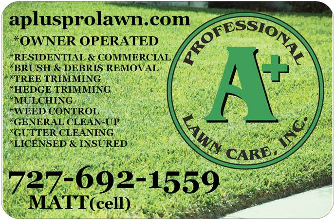 A+ Professional Lawn Care